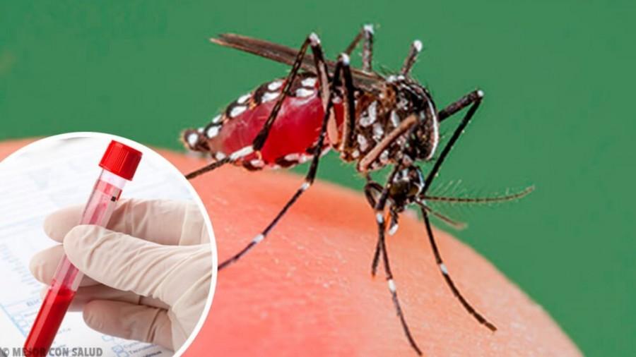 En Brasil sigue aumentando el caso de dengue