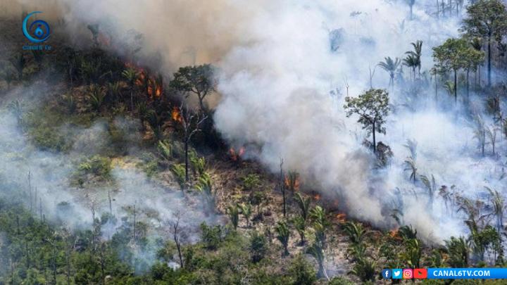 Sin recursos para frenar incendios en la Amazonia: Bolsonaro