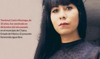 Exigen justicia para Temi, asesinada por su excuñado en Chalco