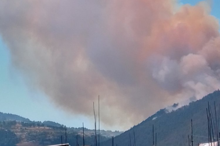 Incendio forestal consume seis hectáreas de bosque en Huixquilucan