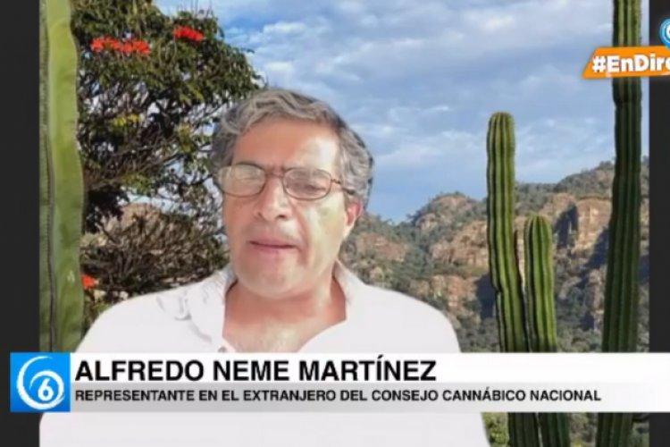"""La ley Cannábica se quedó """"corta"""", señala consejero cannábico"""