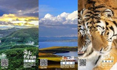 China creará parques nacionales para proteger la vida silvestre